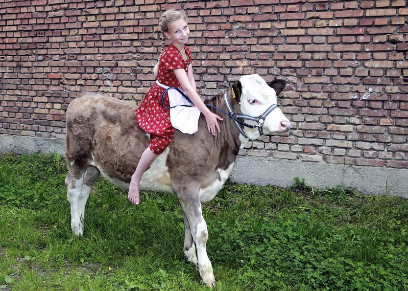 Familie auf dem Bauernhof demeter Sommer Rosenheim Mädchen auf Kuh